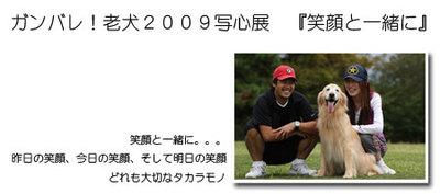 2009bana_21